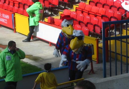 CPFC vs Watford 005