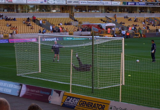wolves kiraly
